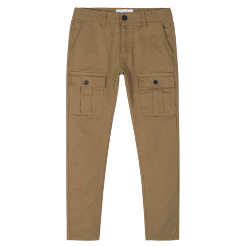 1720 Cargo pants (Beige) / slim